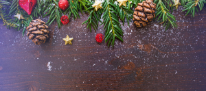 instacoins-festive-season-customer-support-opening-hours